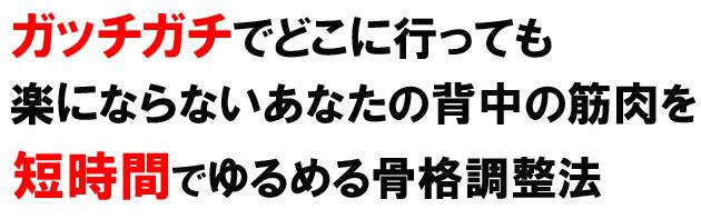 seitai_headline クラニオセイクラルセラピー / 整体 板橋区本蓮沼駅20秒(東京メトロ三田線 ) 自律神経調整の整体